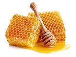 تولید ۴۰۰ تن عسل طی ۳ ماهه نخست در استان