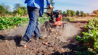 اظهارنظر مسوولانی که از درک ساده مفاهیم کشاورزی عاجزند؛تیشه به ریشه کشاورزی زد/ جای خالی هدفگذاری در طراحی برنامههای بخش کشاورزی