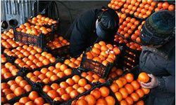 قیمت تنظیم بازار  میوه شب عید اعلام شد