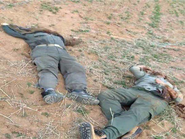 شهادت 2 محیطبان توسط شکارچیان غیرمجاز