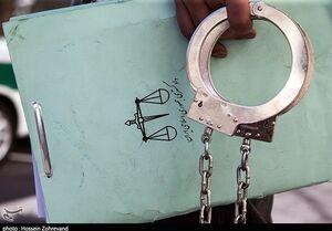 فیلم/ دستگیری سارقانی که همه چیز سرقت میکردند!