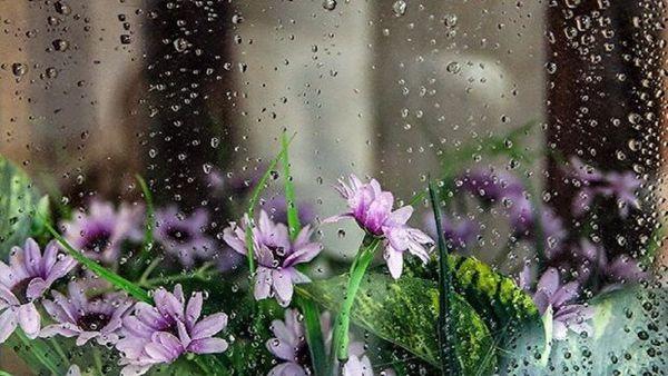 بارش های رگباری در گلستان تا سه شنبه ادامه دارد