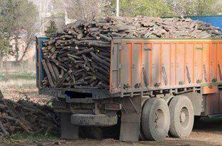 کشف بیش از 2000 کیلوگرم چوب در گنبد