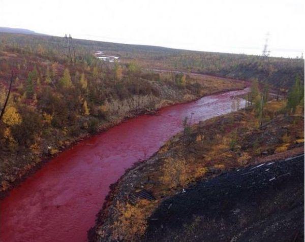عکس/ وحشت مردم روسیه از تغییررنگ رودخانه