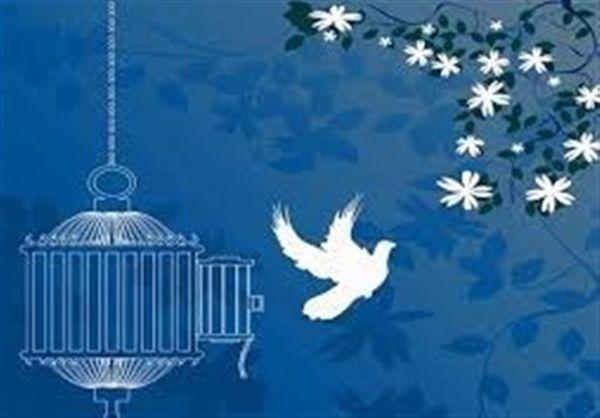 آزادی محیط بان گلستانی