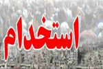 جزییات استخدامی در بخش های دولتی در مهر و آبان 95