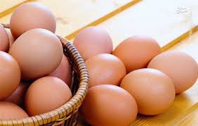فیلم/ علت افزایش قیمت تخم مرغ چیست؟