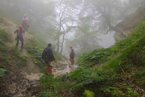 یک هفته جستجو برای یافتن پیرمرد گمشده در جنگل علی آباد کتول بی نتیجه ماند