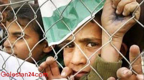 کمک گلستانی ها به مردم بی دفاع غزه