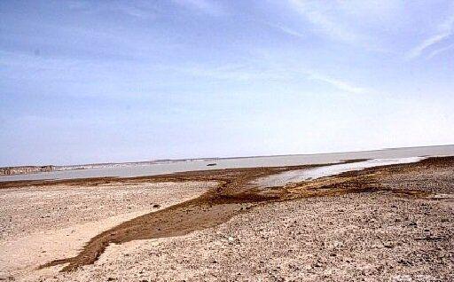 نرخ رسوبگذاری خلیجگرگان ۱۰۰ برابر میانگین سایر دریاها/غیرممکن بودن لایروبی به دلیل وسعت زیاد