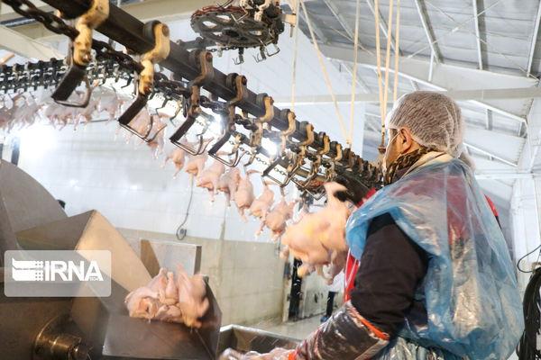 تصویب ۱۶ هزار میلیارد ریال تسهیلات برای طرحهای اقتصادی گلستان