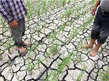 ۹۱ درصد مساحت گلستان درگیر خشکسالی است
