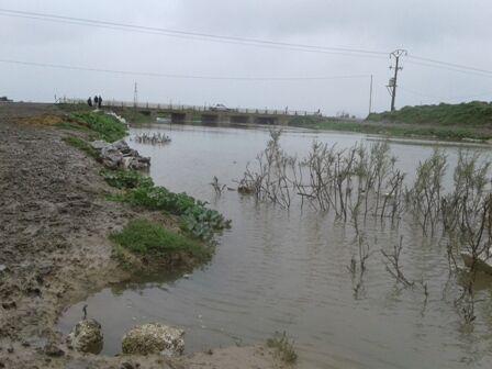 باران رودخانه قرهسو در گلستان را لبریز کرد