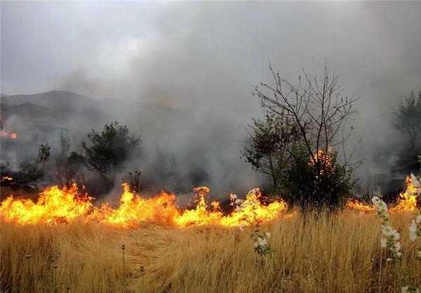 حدود ۱۰۰ هکتار از اراضی گندم و جو در آق قلا در آتش سوخت