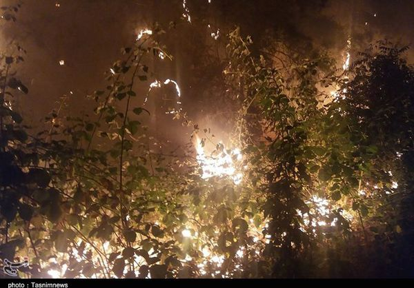 اعزام ۲ دستگاه بالگرد برای مهار آتشسوزی در جنگلهای شهرستان کلاله