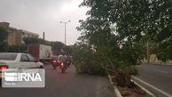 تندباد جاده گرگان -کردکوی را بست