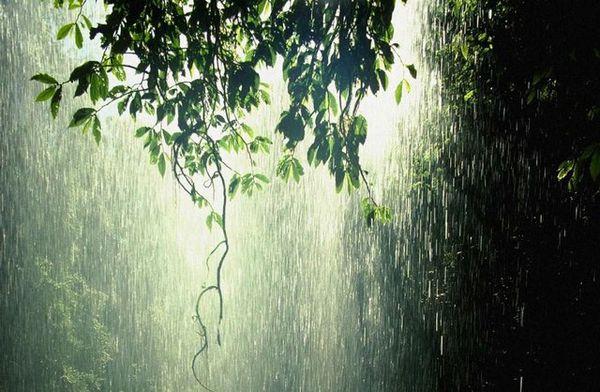 بارش برف و باران در گلستان