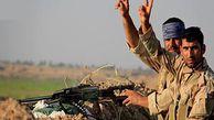 فیلم/ به آتش کشیده شدن داعش در عراق به تلافی خون شهید محسن حججی