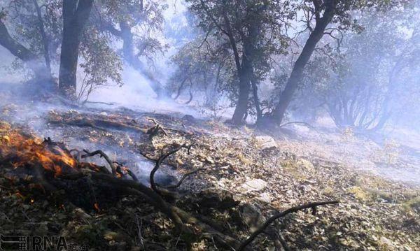 تیم های امدادی برای مهار آتش سوزی در ارتفاعات جنگل توسکستان به منطقه اعزام شدند
