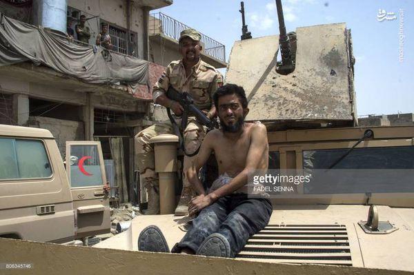 عکس/ گرداندن یک اسیر داعشی در موصل