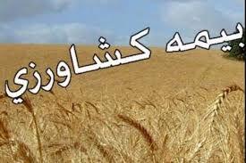 کشاورزان در حوزه بیمه محصولات کشاورزی کوتاهی نکنند/ آغاز کشت چغندر در گرگان