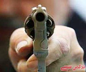 فیلم/ کشف انواع اسلحههای غیرمجاز در گلستان