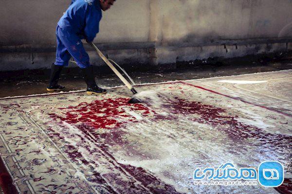کرونا از طریق شستن فرش در قالیشویی ها منتقل می شود؟