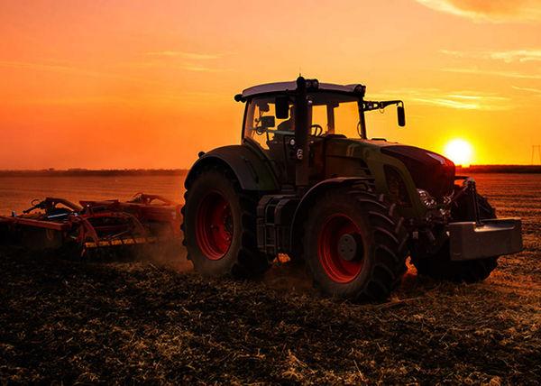 کشاورز متعرض به تالاب گمیشان دستگیر شد