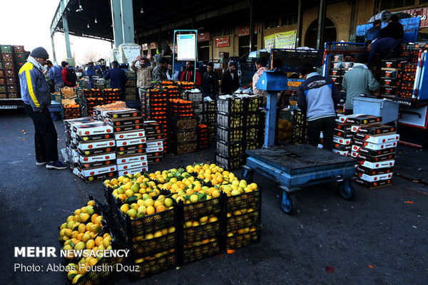 ۴۰۰ تن سیب و ۶۰۰ تن پرتقال برای شب عید گلستان در نظر گرفته شد