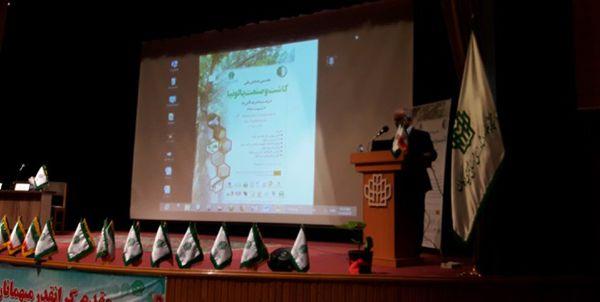 برگزاری نخستین همایش ملی «کاشت و صنعت پالونیا» در مرکز استان
