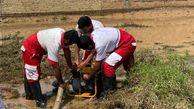 امدادرسانی به ۳۰۱ نفر در حوادث تیرماه گلستان