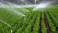 کمک بلاعوض جهاد کشاورزی از اجرای سیستم آبیاری نوین در مزارع