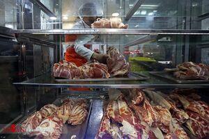 فیلم/گوشت گوساله هر کیلو ۹۹ هزار تومان!