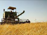 مشکلات کشاورزان  گندم کار با طرح تقویت امنیت غذایی می شود