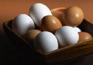 کاهش 5.5 درصدی تخم مرغ