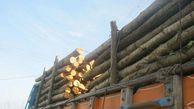 کشف ۵۲ تن چوب قاچاق در گلستان/ ۴ نفر دستگیر شدند