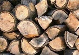 قاچاقچیان چوب دستگیر شدند