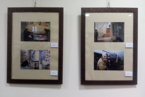 برگزیدگان عکس سال گلستان معرفی شدند