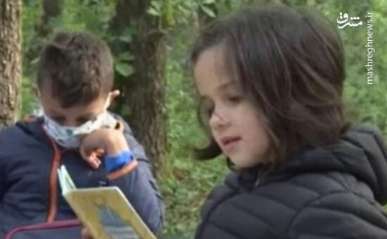 فیلم/ برگزاری کلاس ابتدایی در جنگل در اعتراض به تصمیم شهردار!