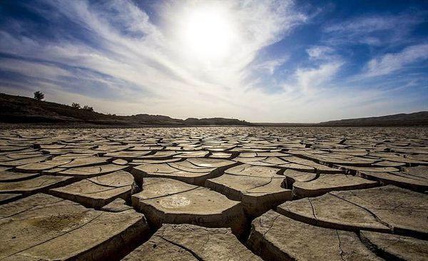 از بین رفتن ۴۰ هزار هکتار گندم شمال گلستان بر اثر خشکسالی