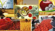 321 واحد صنایع تبدیلی در 14 شهرستان گلستان مستقر شده است