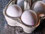 افزایش قیمت تخم مرغ/قیمت نان و شویندهها ثابت ماند