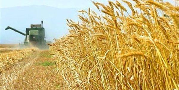 خام فروشی، سهم گلستان از درآمد بخش کشاورزی
