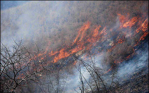 5هزار مترمربع از ارتفاعات جنگل ناهار خوران در آتش سوخت.