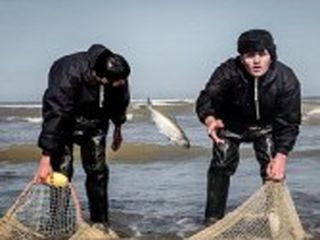 فعالیت ۸۱۳ صیاد در سواحل گلستان