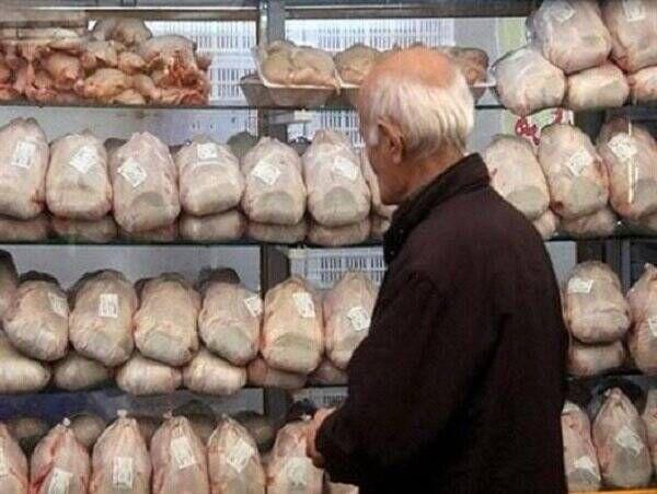 فیلم/ جوجهریزی دولت برای مهار قیمت مرغ!