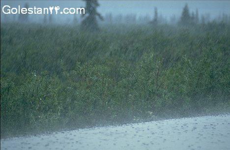 بارندگی و زمین کشاورزی