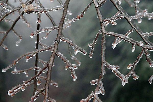 یخبندان شبانه تا چهارشنبه در گلستان ماندگار است