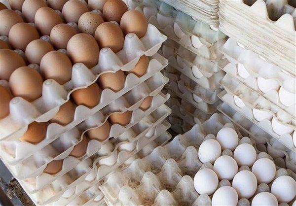 ۳۰ درصد تخممرغ تولیدی در استان گلستان صادر میشود