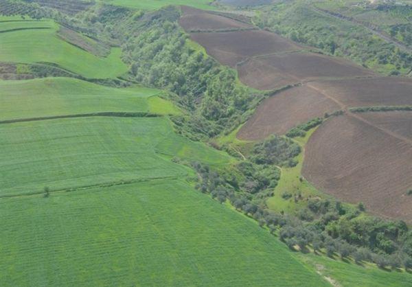 بیش از ۲۱۹ میلیارد ریال زمینخواری در گلستان کشف شد